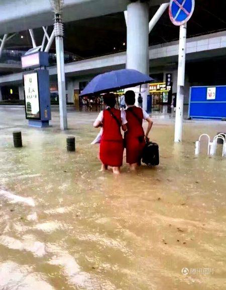 הנבואה שהתגשמה והמבול שהגיע
